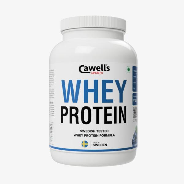 Best Blueberry Whey Protein